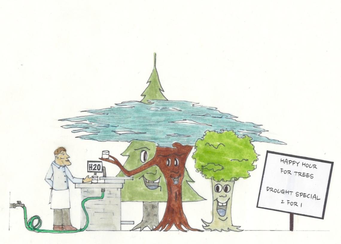 TreeDiagram