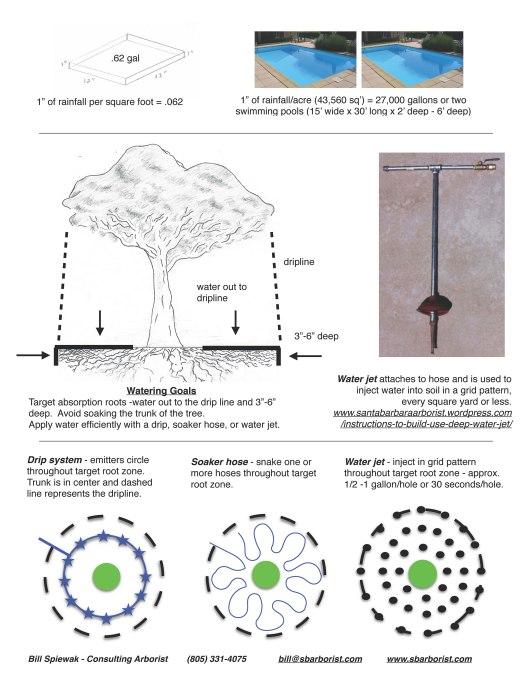 WateringTreesDuringDrought4-14-15